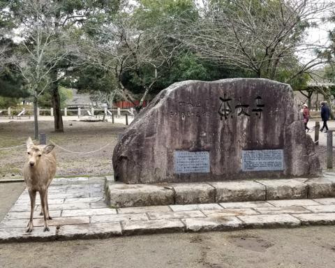 1903 東大寺石.png