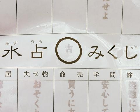 11月 水占い.jpg